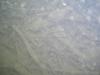 CIMG9931-20130624-090054