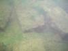 CIMG9957-20130624-085843